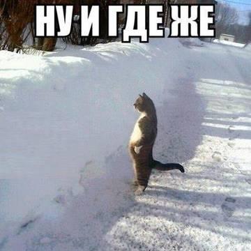 http://s2.uploads.ru/t/thB5o.jpg