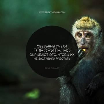 http://s2.uploads.ru/t/u9NhJ.jpg