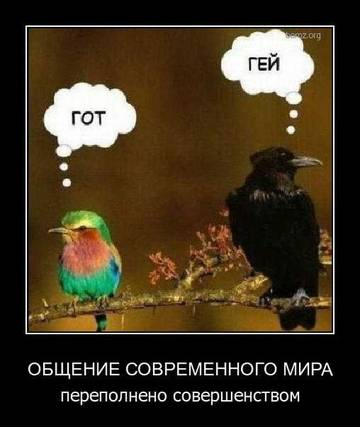 http://s2.uploads.ru/t/uxpVy.jpg