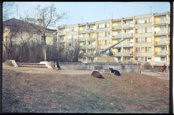 http://s2.uploads.ru/t/vizyx.jpg