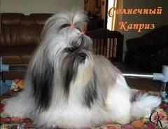 http://s2.uploads.ru/t/wKEGs.jpg