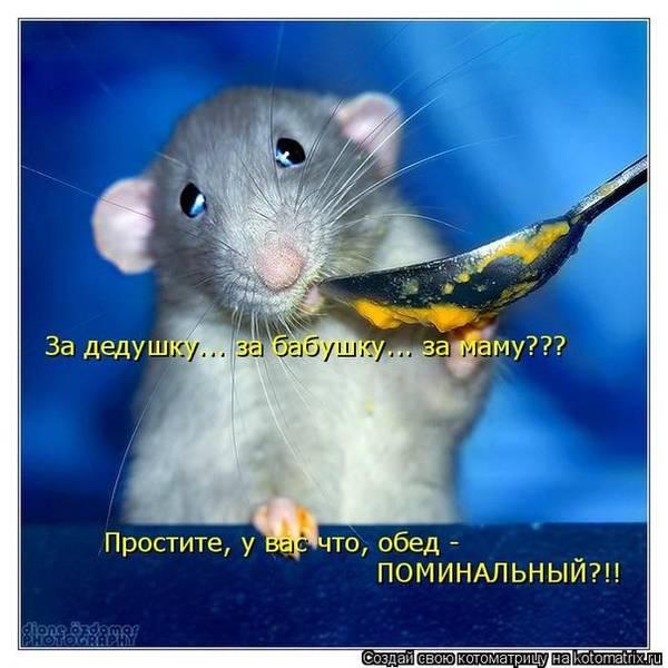 http://s2.uploads.ru/t/wnTEm.jpg