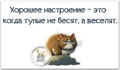 http://s2.uploads.ru/t/xMjY0.jpg
