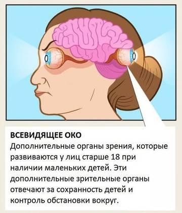 http://s2.uploads.ru/t/yUGV0.jpg