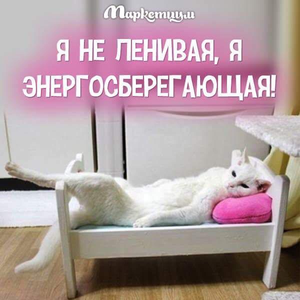 http://s2.uploads.ru/t/zBZhn.jpg