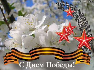 http://s2.uploads.ru/t/zNPyL.jpg