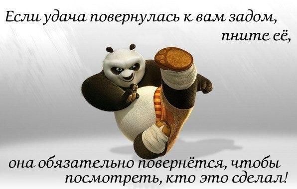 http://s2.uploads.ru/t/zPZDy.jpg