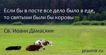 http://s2.uploads.ru/t/zVpla.jpg