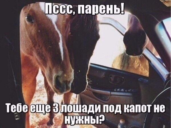 http://s2.uploads.ru/tSzyP.jpg