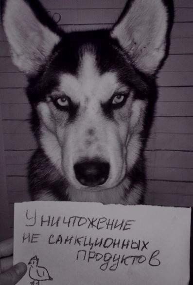 http://s2.uploads.ru/tVsLk.jpg