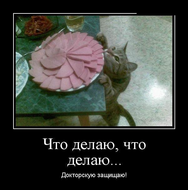 http://s2.uploads.ru/txD8i.jpg