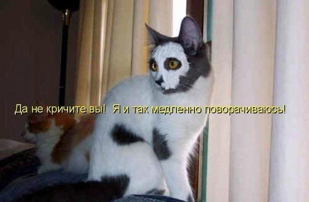 http://s2.uploads.ru/u8Irg.jpg
