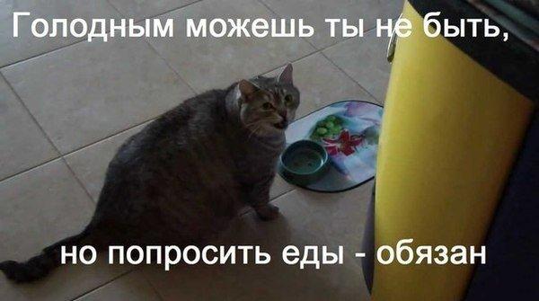 http://s2.uploads.ru/v7urZ.jpg