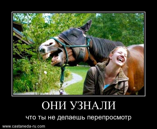 http://s2.uploads.ru/vRcCM.jpg