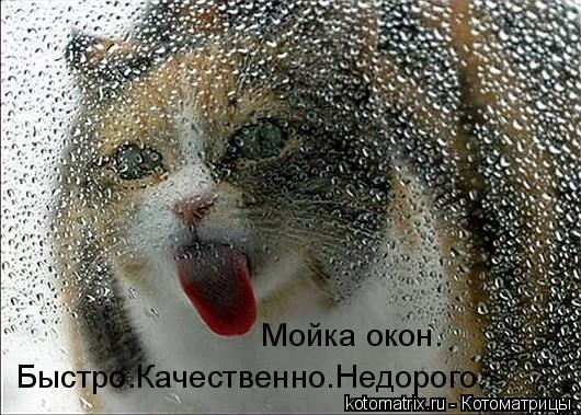 http://s2.uploads.ru/vr64n.jpg