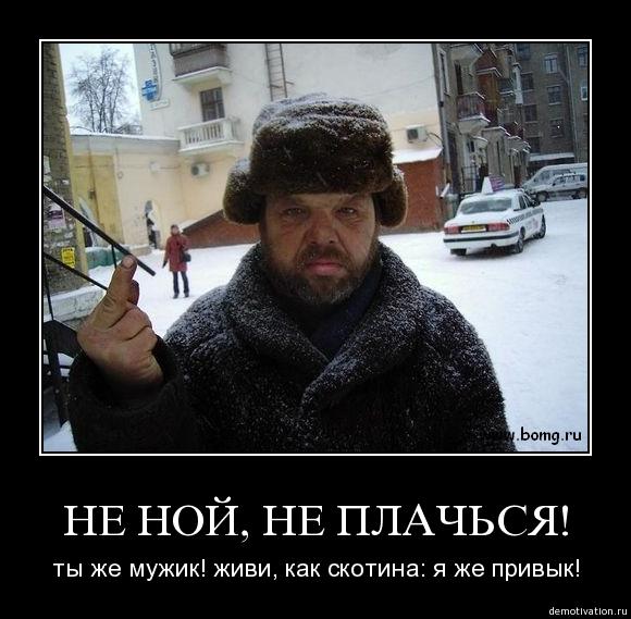 http://s2.uploads.ru/w6PcA.jpg