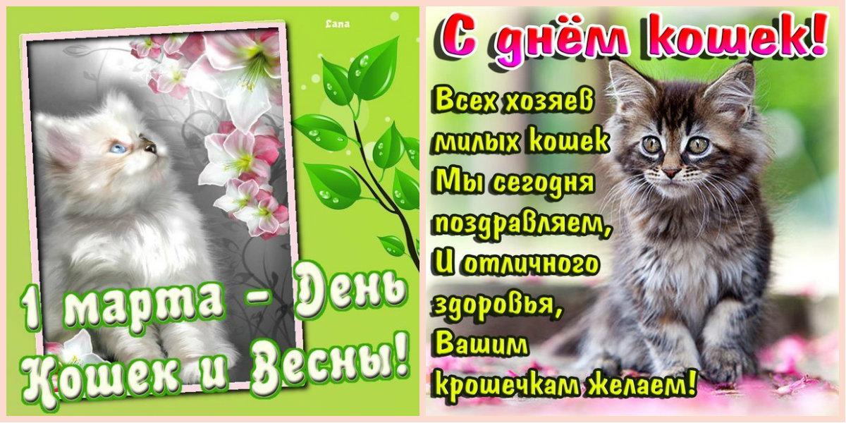 http://s2.uploads.ru/wfhEP.jpg
