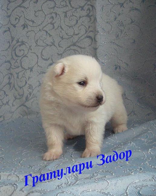 http://s2.uploads.ru/wpPRY.jpg