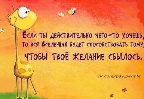 http://s2.uploads.ru/xm7hA.jpg