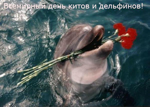 http://s2.uploads.ru/yub6h.jpg