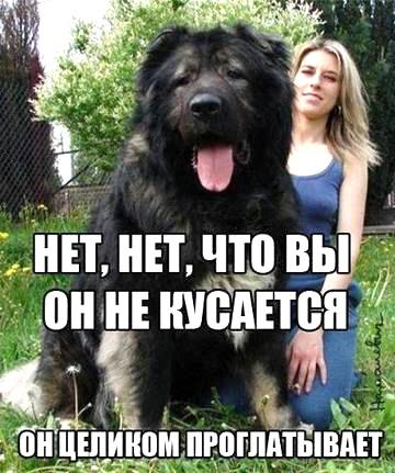 http://s2.uploads.ru/z9Pa1.jpg