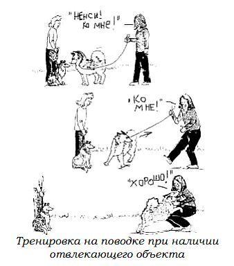 http://s2.uploads.ru/zcgsT.jpg