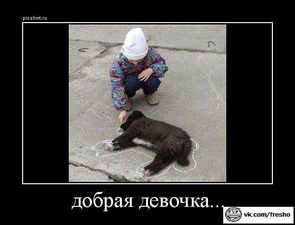 http://s2.uploads.ru/zrNj7.jpg