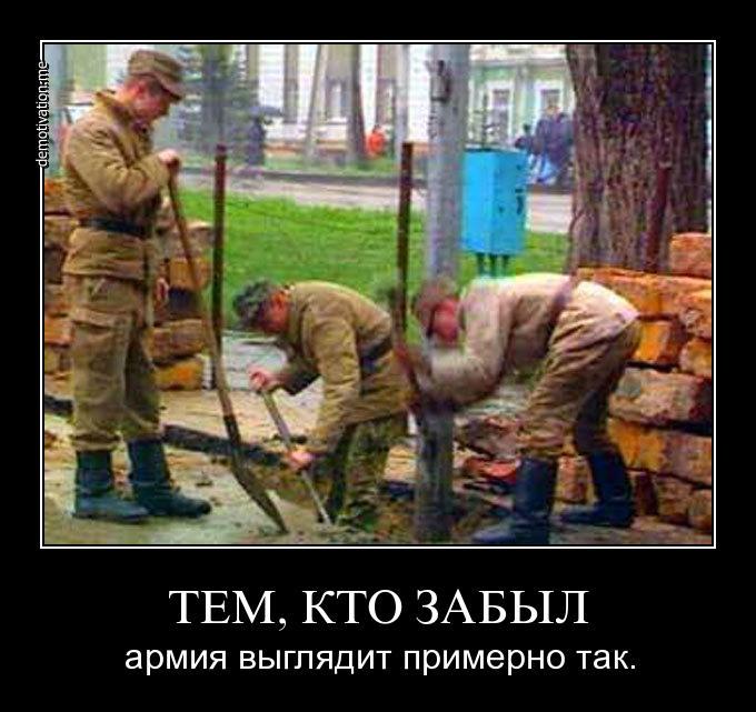http://s2.uploads.ru/0BVjk.jpg