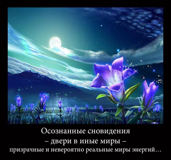 http://s2.uploads.ru/1RIyF.jpg