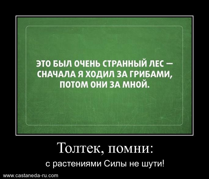 http://s2.uploads.ru/2S0hr.jpg