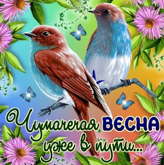 http://s2.uploads.ru/2ciKd.jpg