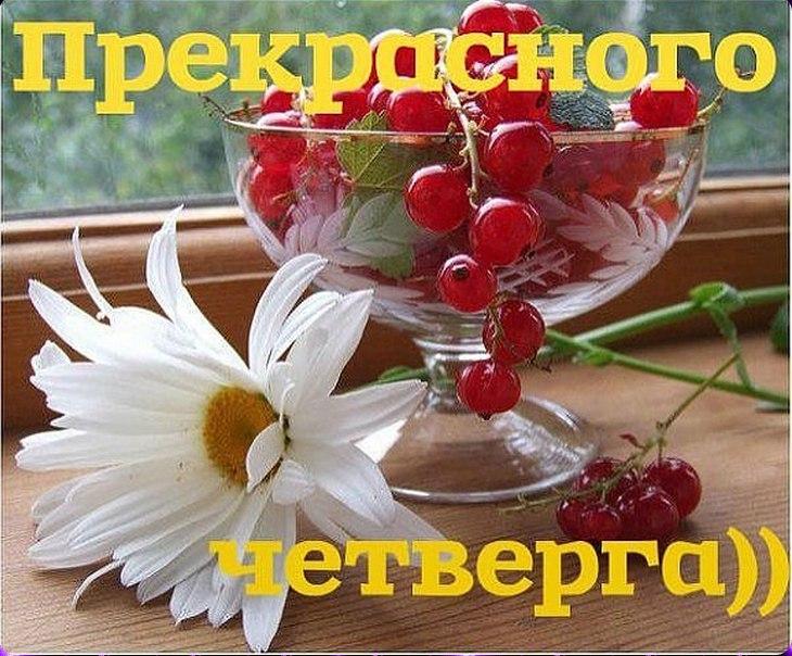 http://s2.uploads.ru/3kLKi.jpg