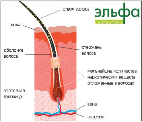 http://s2.uploads.ru/53y9g.jpg