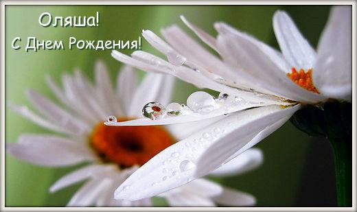 http://s2.uploads.ru/5R4aj.jpg