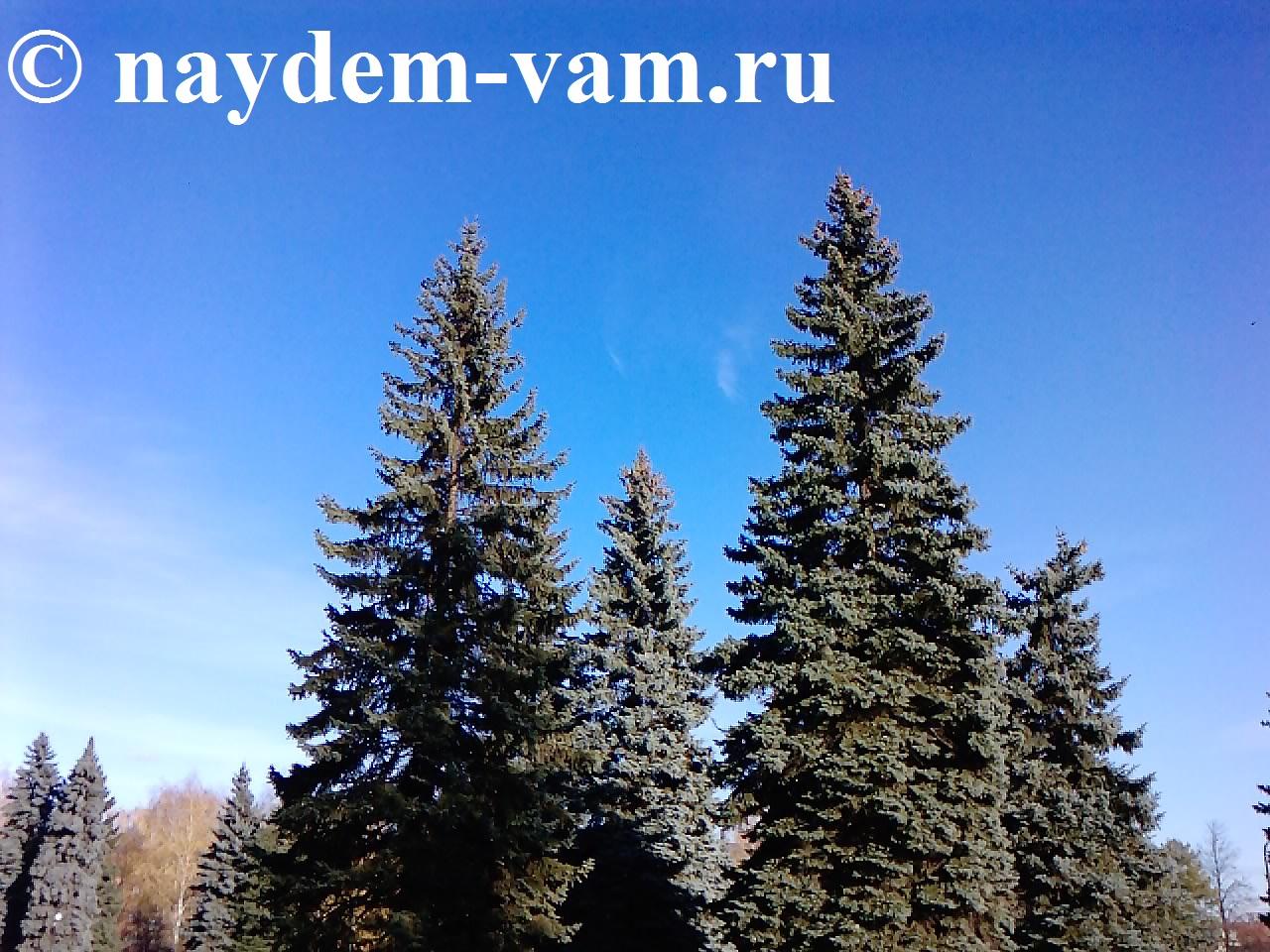 http://s2.uploads.ru/9EuL7.jpg