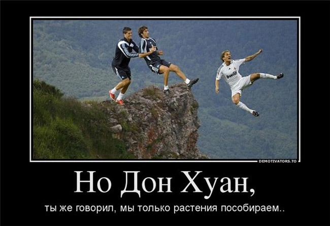 http://s2.uploads.ru/9Jt53.jpg