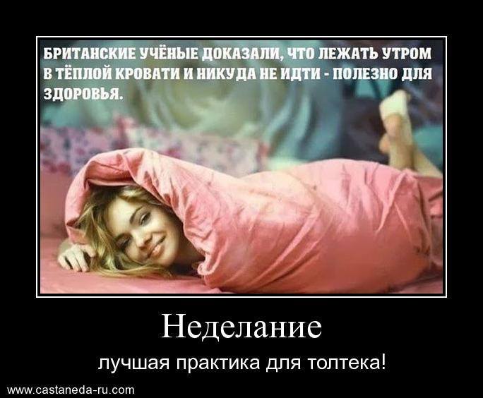http://s2.uploads.ru/C5Ts2.jpg