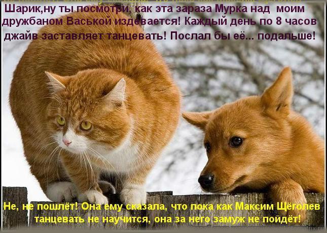 http://s2.uploads.ru/HsMVa.jpg
