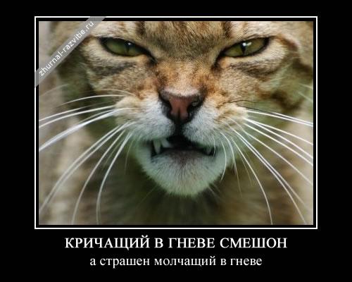 http://s2.uploads.ru/IDwXT.jpg