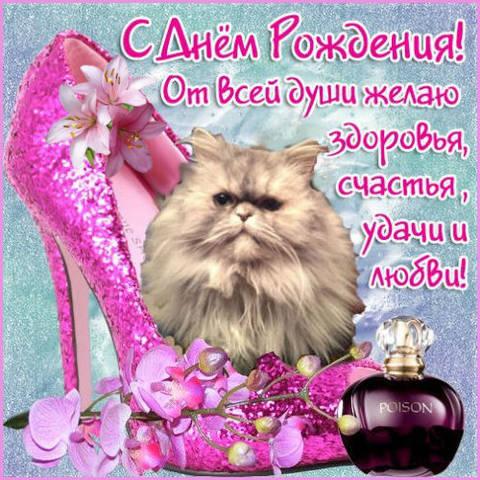 http://s2.uploads.ru/JBg5V.jpg