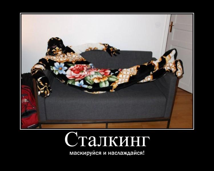 http://s2.uploads.ru/Jfed1.jpg