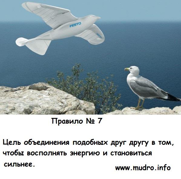 http://s2.uploads.ru/Ktf45.jpg