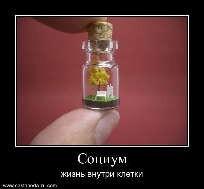 http://s2.uploads.ru/MuwCh.jpg