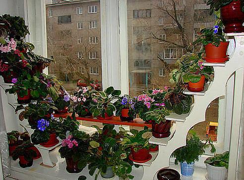 http://s2.uploads.ru/S6moI.jpg