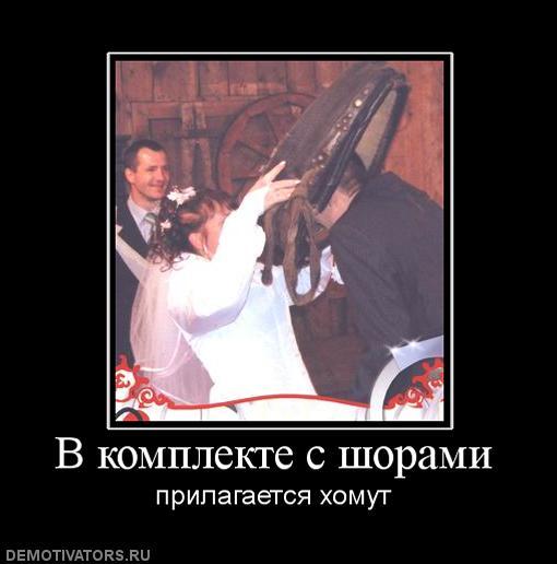 http://s2.uploads.ru/SZ7pH.jpg