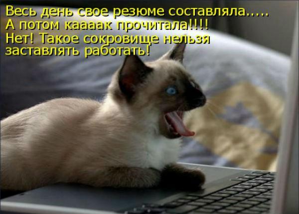 http://s2.uploads.ru/cW2oa.jpg
