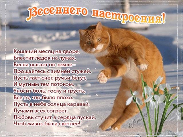 http://s2.uploads.ru/dpJC9.jpg