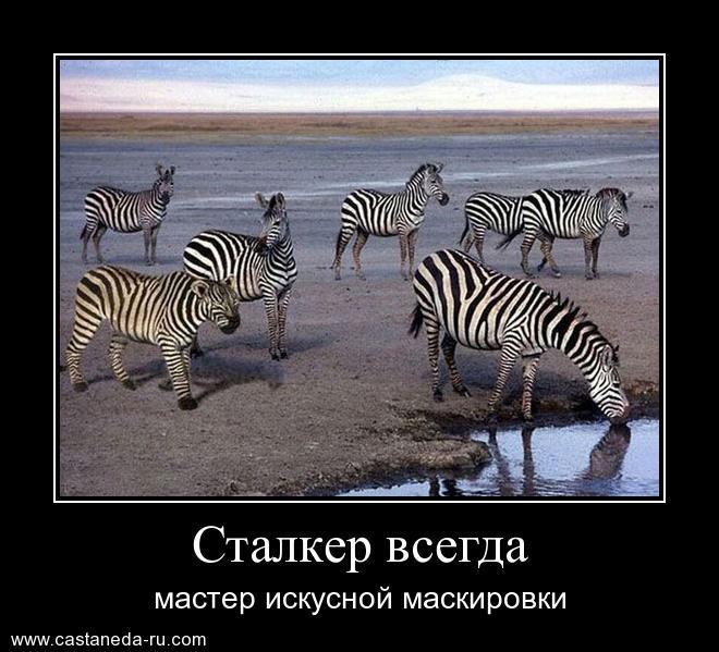 http://s2.uploads.ru/g9Df0.jpg