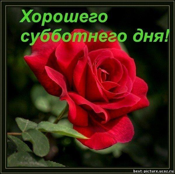 http://s2.uploads.ru/i/RqBWO.jpg