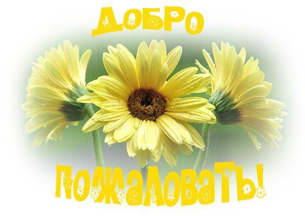 http://s2.uploads.ru/i/pKFaE.jpg